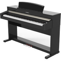 KURZWEIL CUP110 Andante
